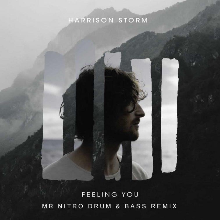 Harrison Storm - Feeling You (Mr Nitro DnB Remix)   Free Download